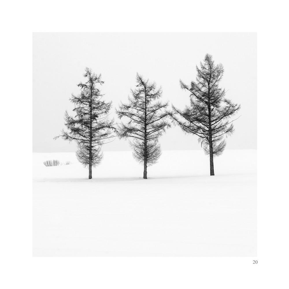 Biei15 Art | Roy Fraser Photographer