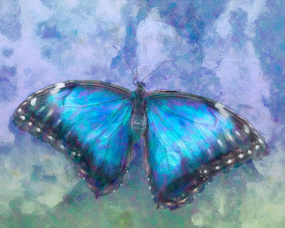 Fairy Blue Butterfly Art | Light Pixie Studio