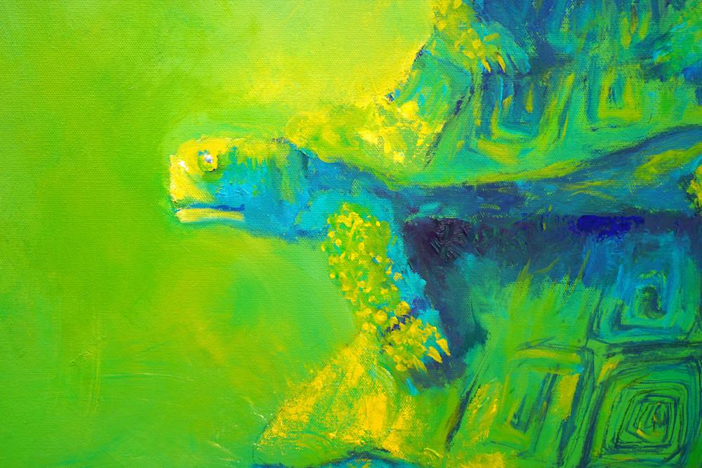 Turtles Green Detail 1 Art | S Pominville