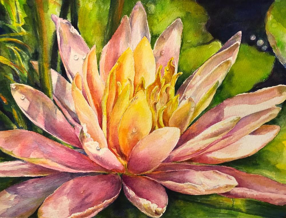 Waterlily Art   ebaumeistermcintyre