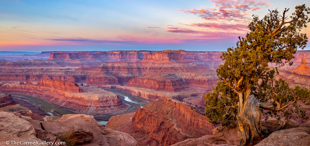 Spring Sunrise, Canyonlands Art | The Carmel Gallery