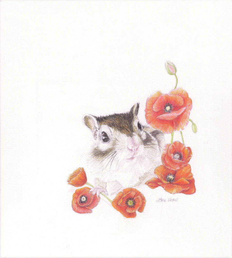 Poppy Art   Lori Vogel Studio