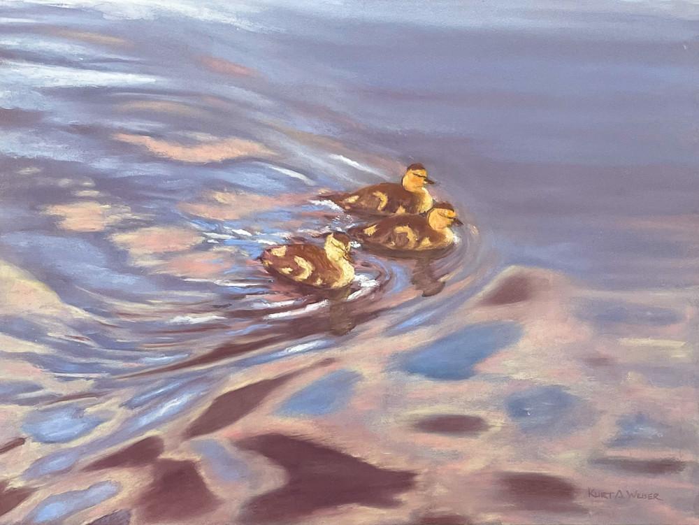 Ducks Art | Kurt A. Weiser Fine Art