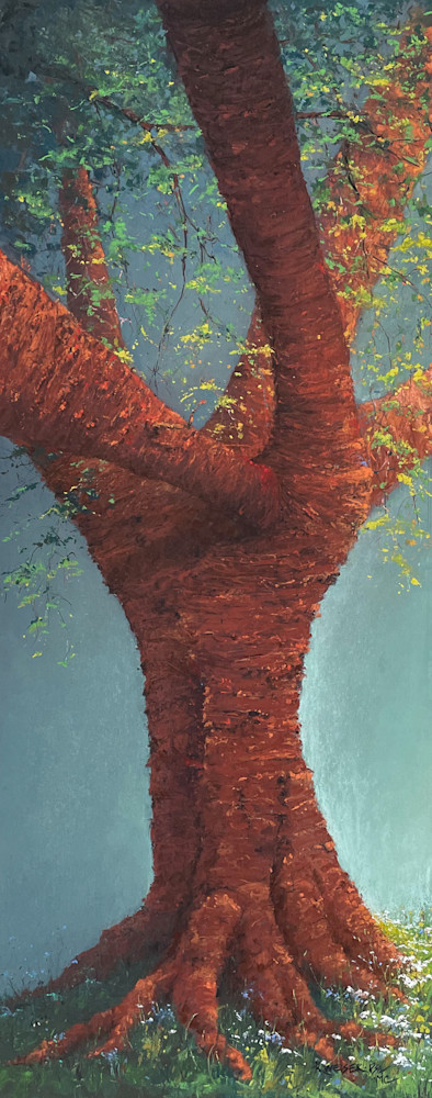 Portrait Of Prunus Art | Kurt A. Weiser Fine Art