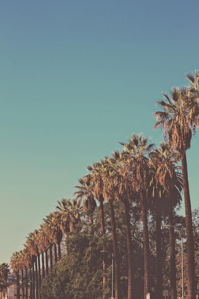 In the sun | original