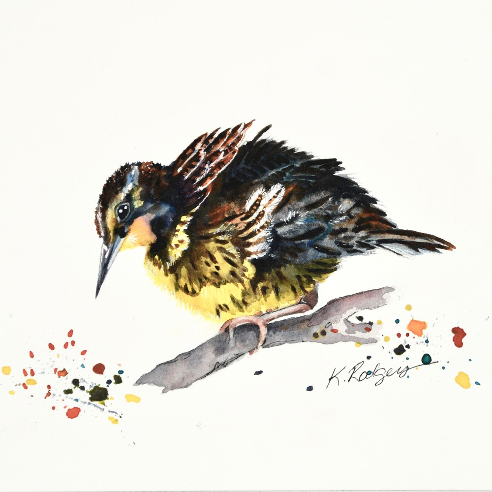 The Young Meadowlark  Art | Katherine Rodgers Fine Art