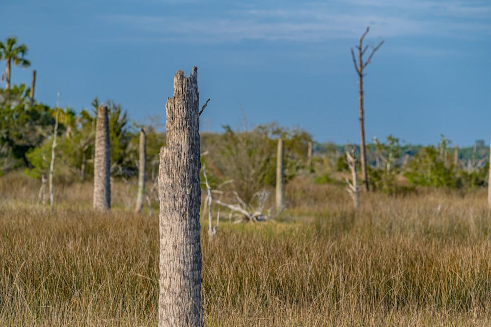 Castaway Island Preserve 2623 Photography Art | kramkranphoto