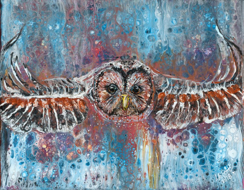 Owl In Flight Art   lisaabbott