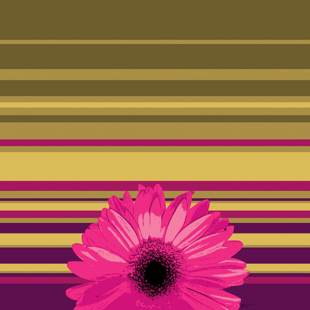 Sunshine Daisy #2, Print Art | Jon Savage Contemporary Art