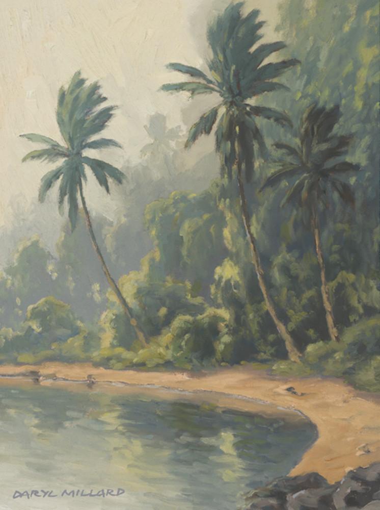 Misty Cove by Daryl Millard