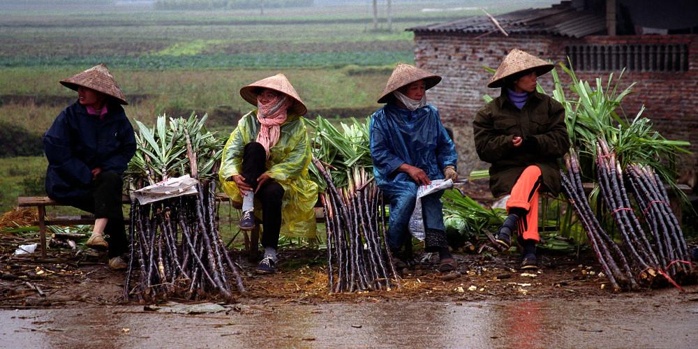 Four Women at a Rural Market, Hanoi