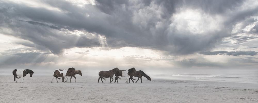 Wild Horses Of The Storm Photography Art | Koru Photo Designs