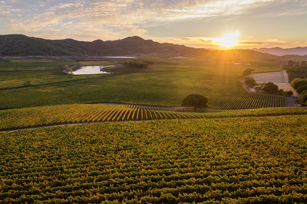 Sunset at the top of Napa Valley