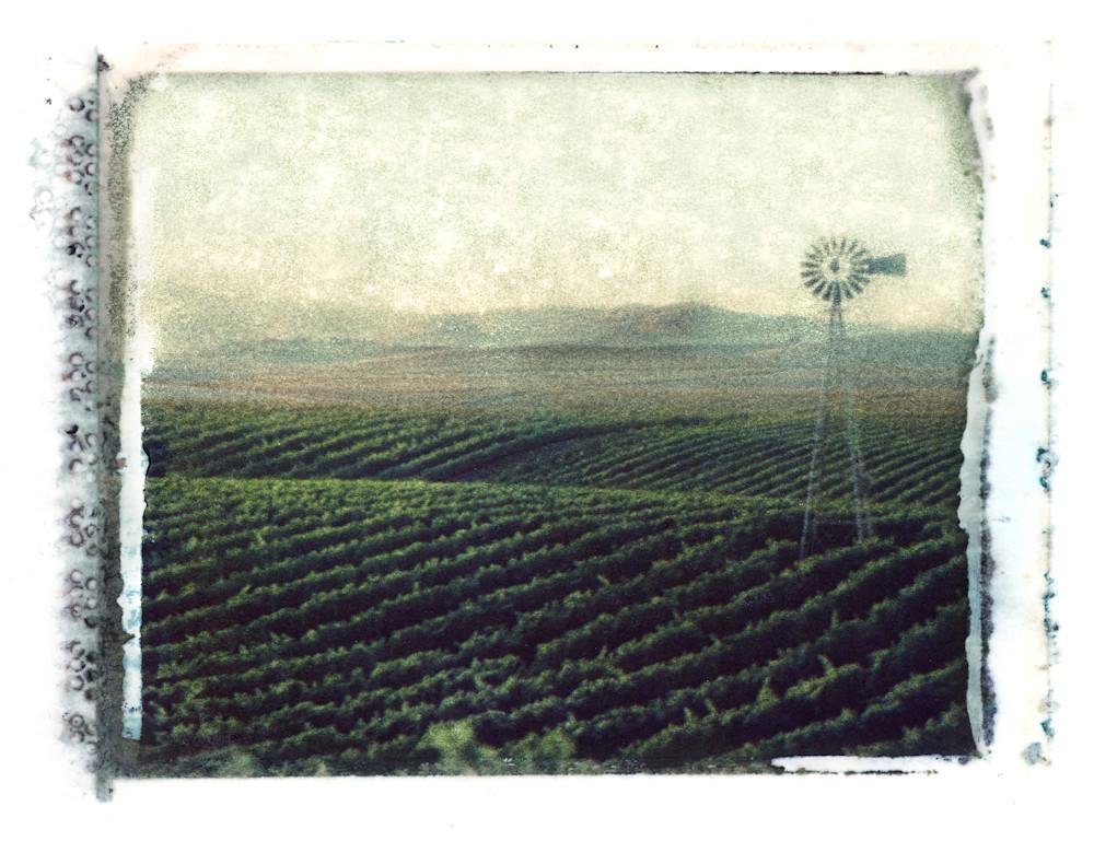 Rolling Carneros hills Polaroid transfer