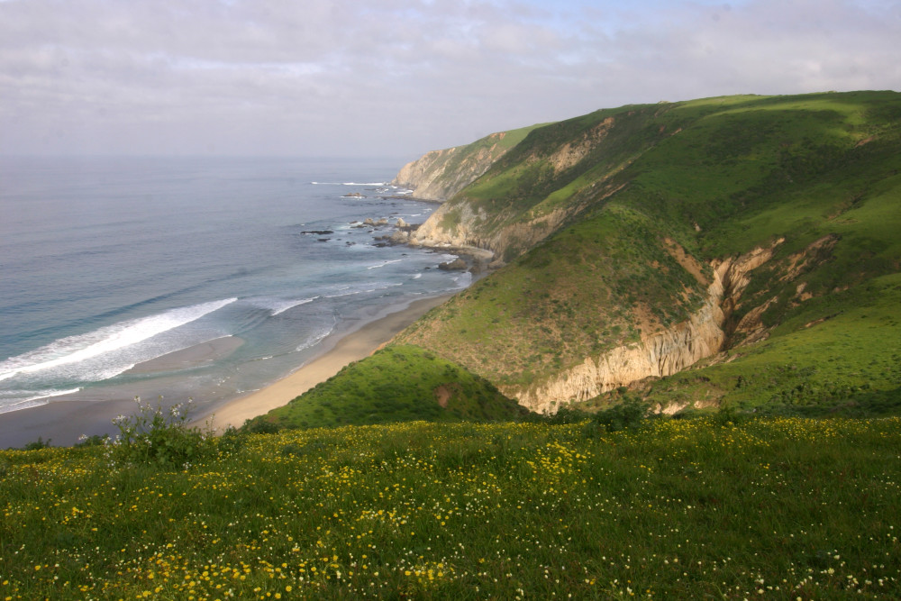 Pt Reyes Seashore coastline beach Marin County Golden Gate Conservation