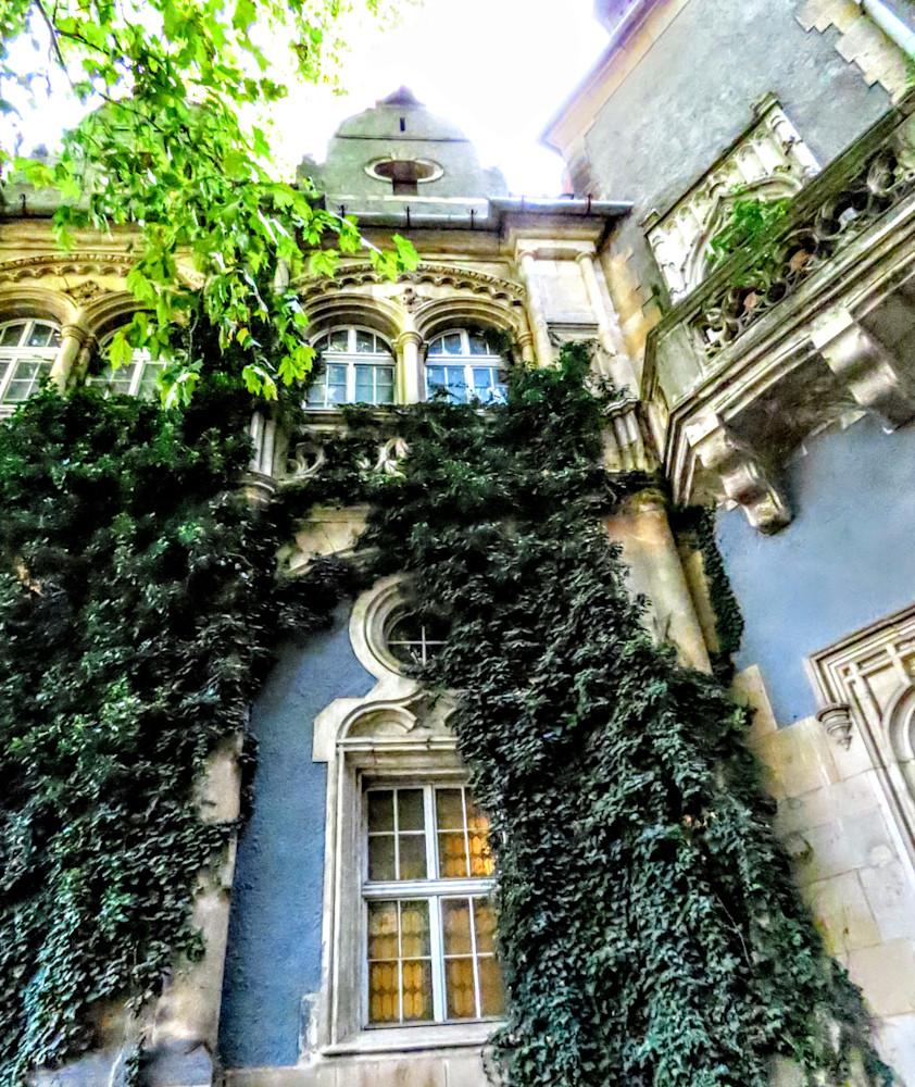 A Budapest Castle And Ivy Photography Art | Photoissimo - Fine Art Photography