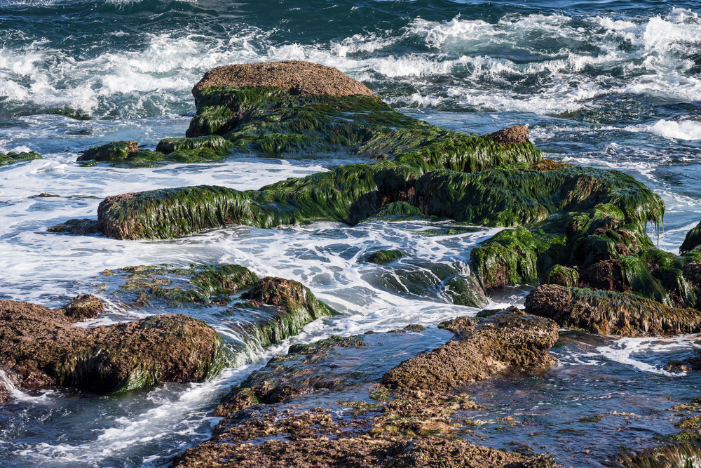 Rocky Reef, La Jolla, California