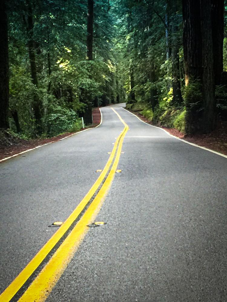 Redwood Highway Photography Art | Kathleen Messmer Photography
