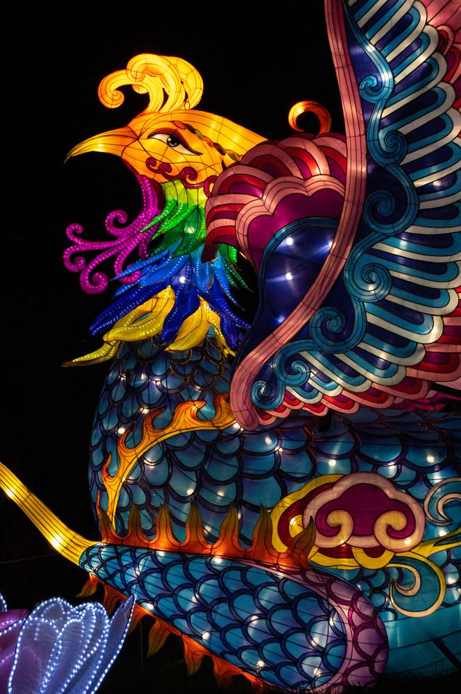 China Light Festival 4 Photography Art | Kathleen Messmer Photography