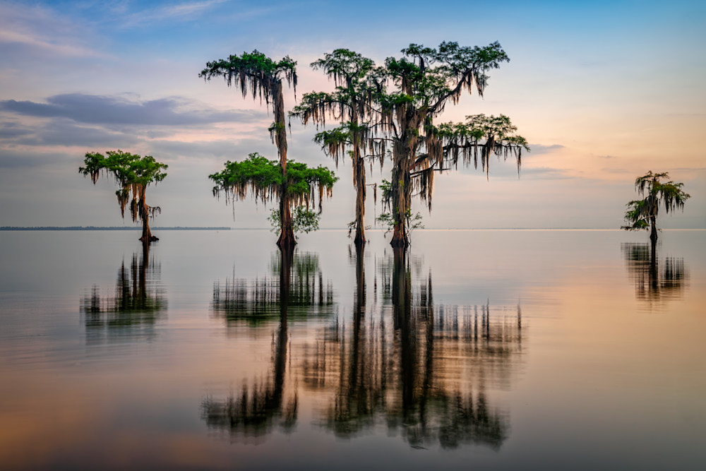 Lake Maurepas Reflection   Shop Photography by Rick Berk