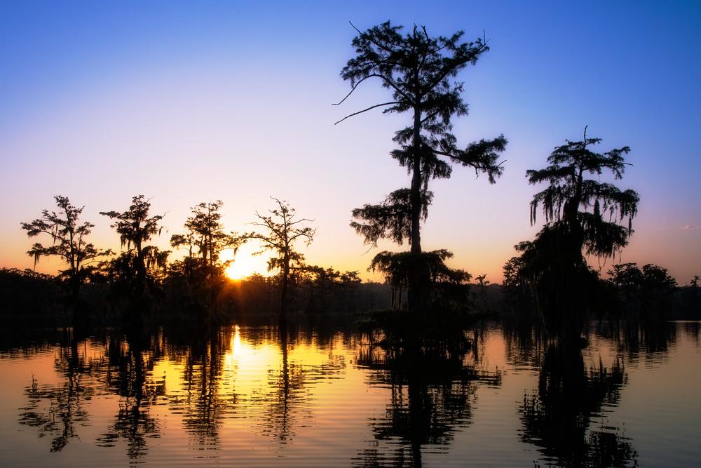 Lake Martin Sunrise - Louisiana swamp fine-art photography prints