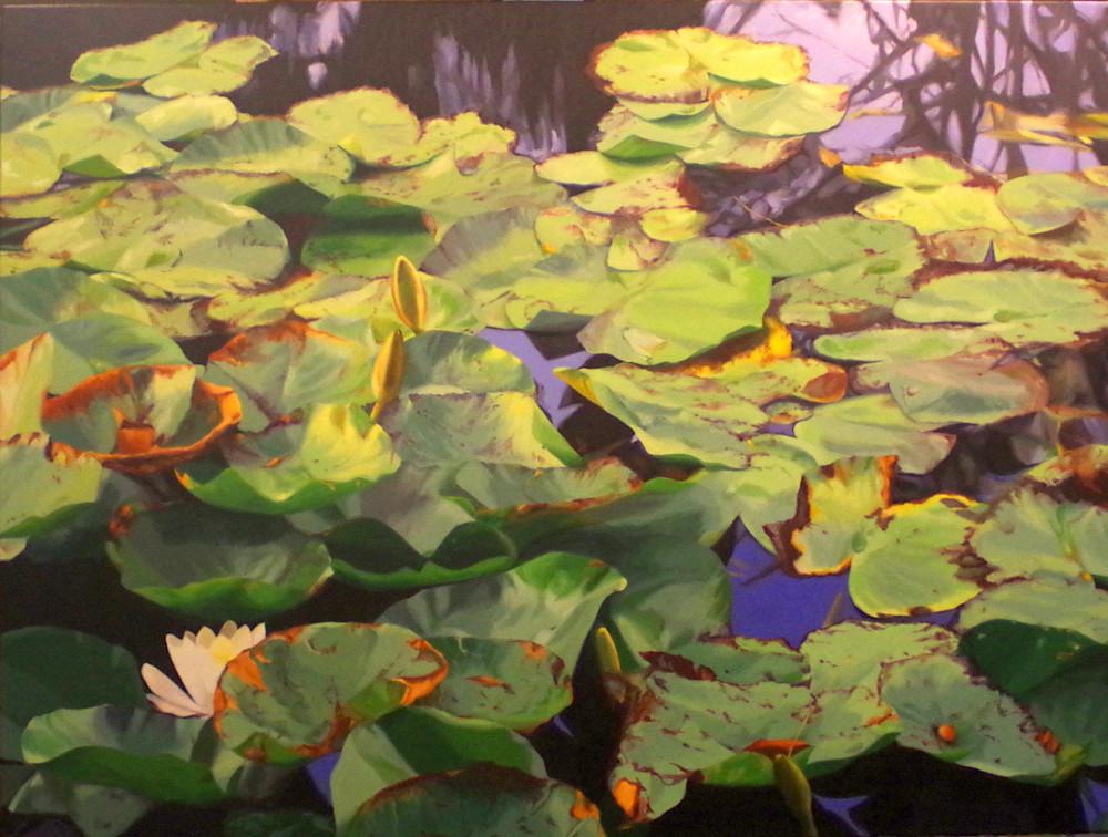 Water Lily Riot Art | Helen Vaughn Fine Art