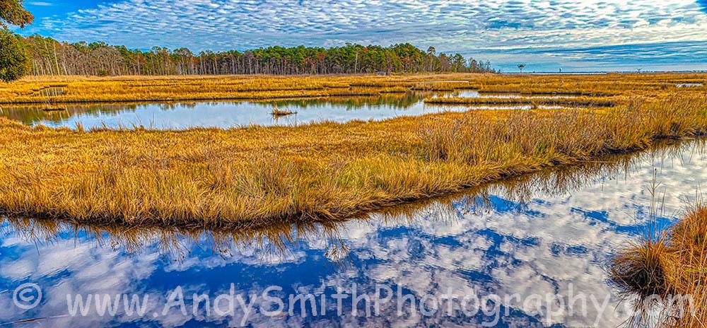 Cloud Reflection at Cattus Island