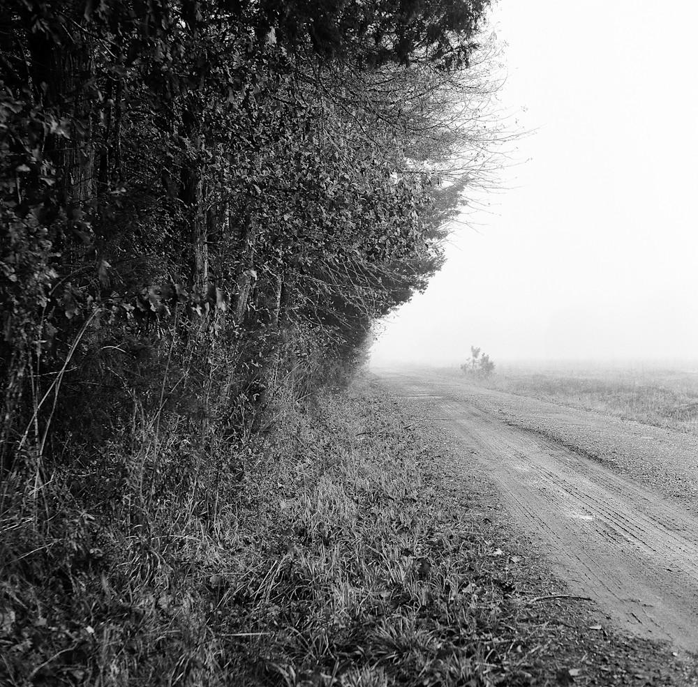 East Texas Road 2 Photography Art   TERESA BERG PHOTOGRAPHY