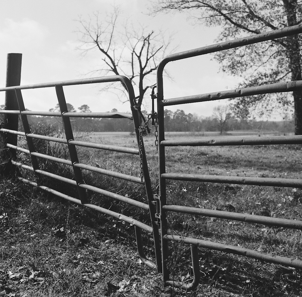 Texas Gate Photography Art   TERESA BERG PHOTOGRAPHY