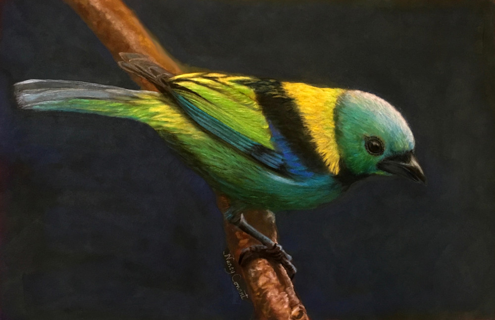 Your Heavenly Father Feeds Them by Nancy Conant is a green headed tanager