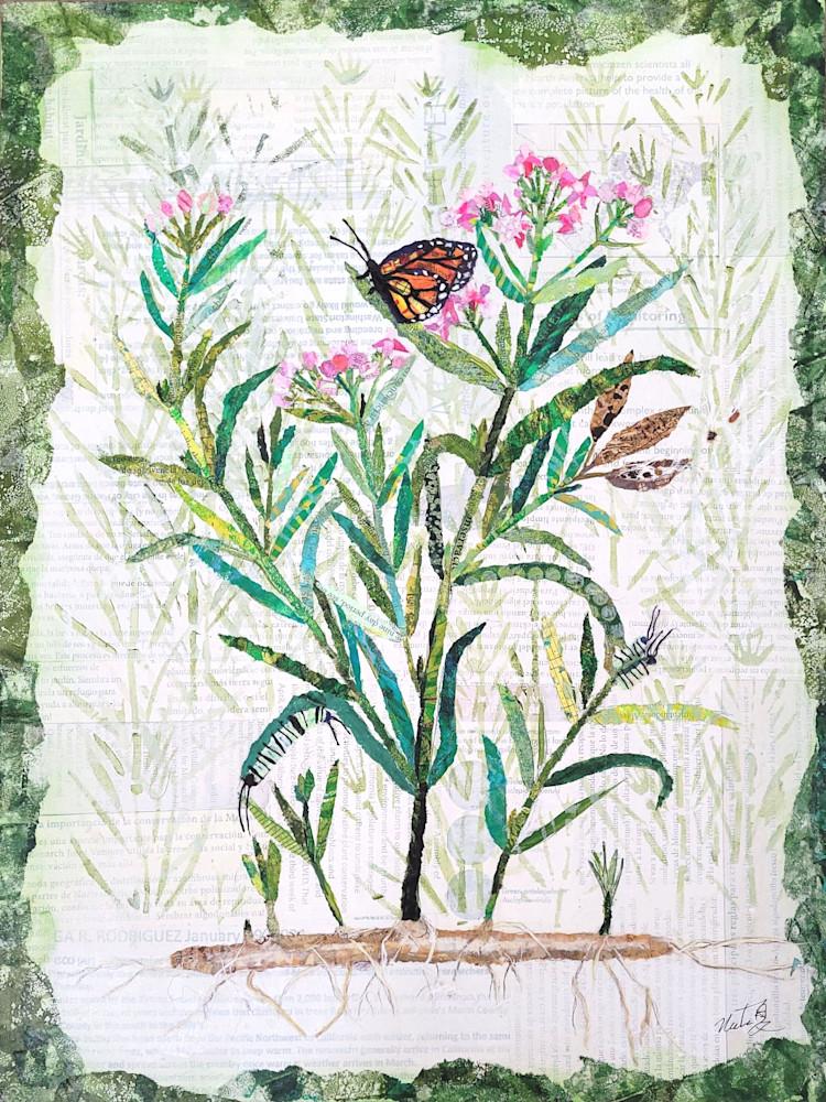 The Dance Of Life: Monarchs And Milkweed Art | Poppyfish Studio