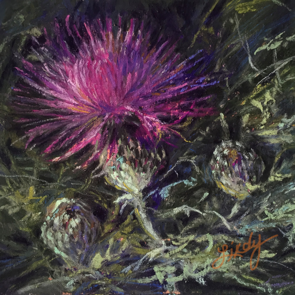 Lindy Cook Severns Art | A Thistle in Time, square print
