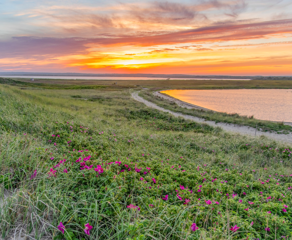 Long Point Beach Rose Sunset Art   Michael Blanchard Inspirational Photography - Crossroads Gallery