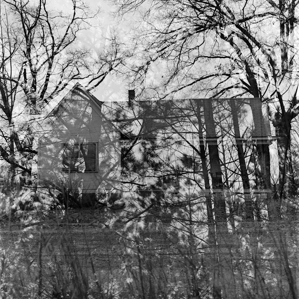 Through The Trees Photography Art   TERESA BERG PHOTOGRAPHY