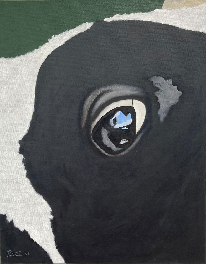 La Jolie Vache X Art   David R. Prentice