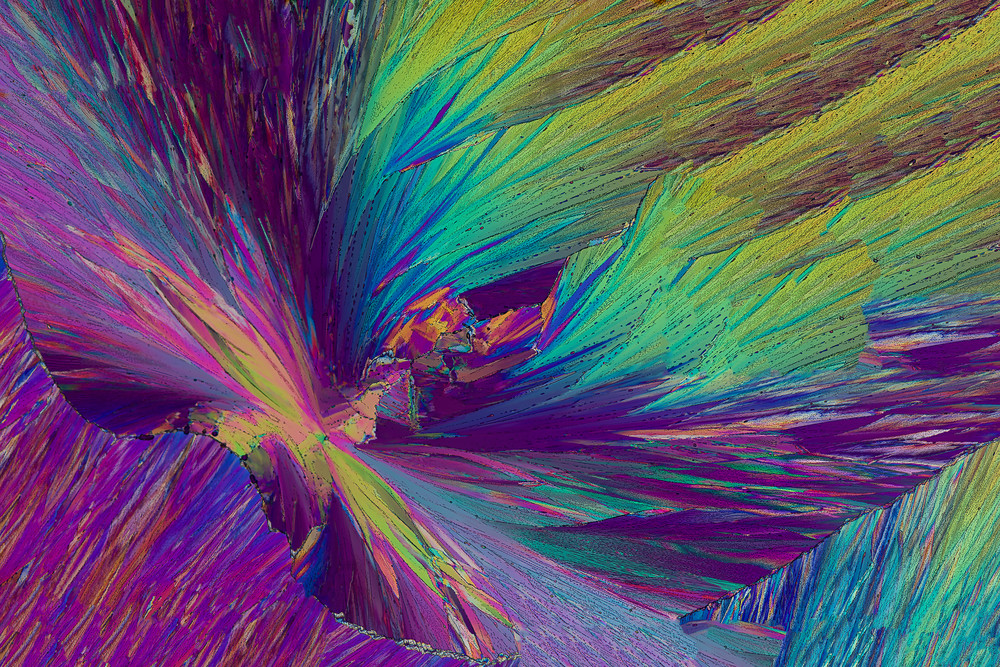Roots And Wings Art | Carol Roullard Art