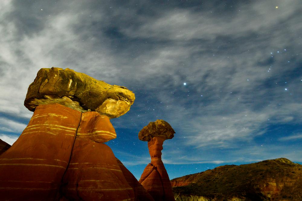 Toadstool Stars Photography Art   Craig Primas Photography