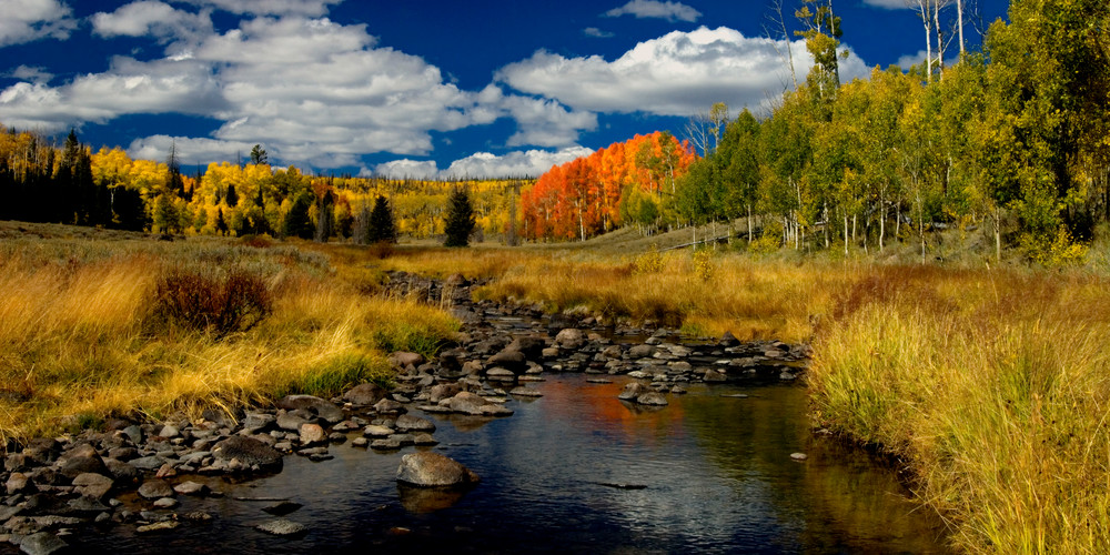 Red Desert Water Color Photography Art | Craig Primas Photography