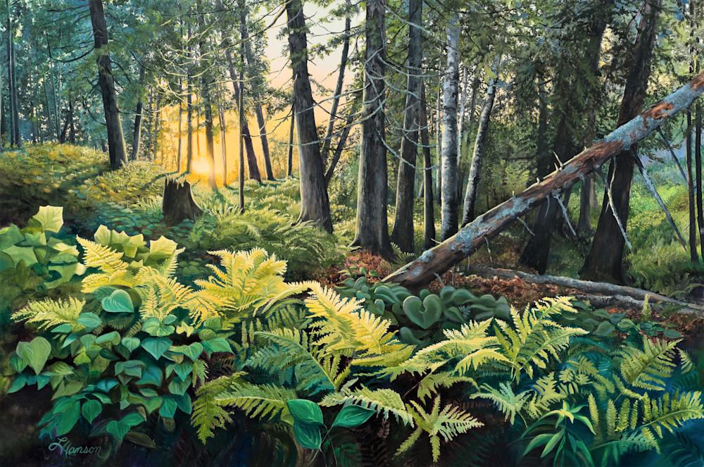Sunset Through The Forest Art   Leanne Hanson Art