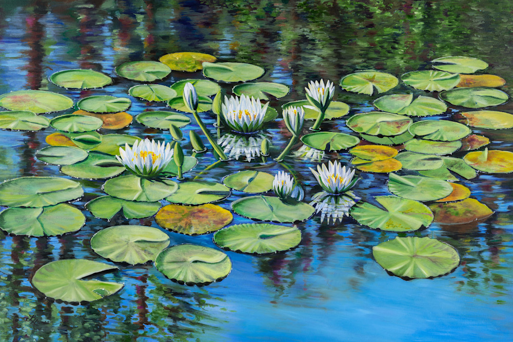 White Waterlilies Art | Leanne Hanson Art