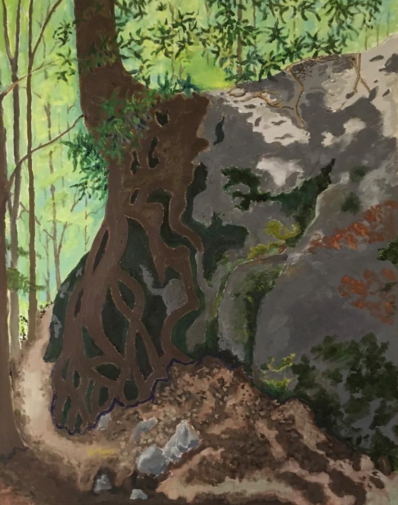 Tree Over Large Rock Art   JoemcInroy