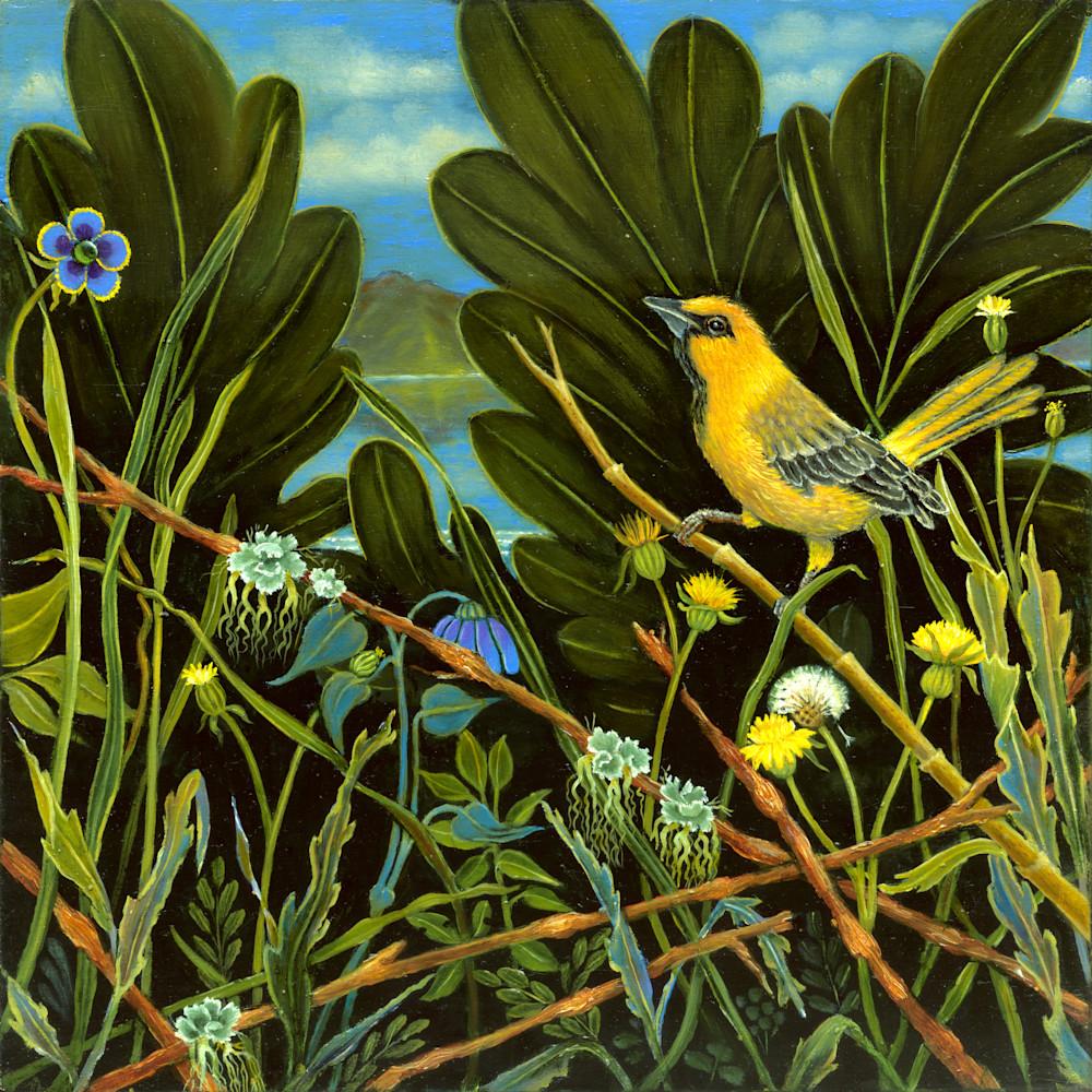 Yellow Bird Of Lake Chapala Art | miaprattfineart.com