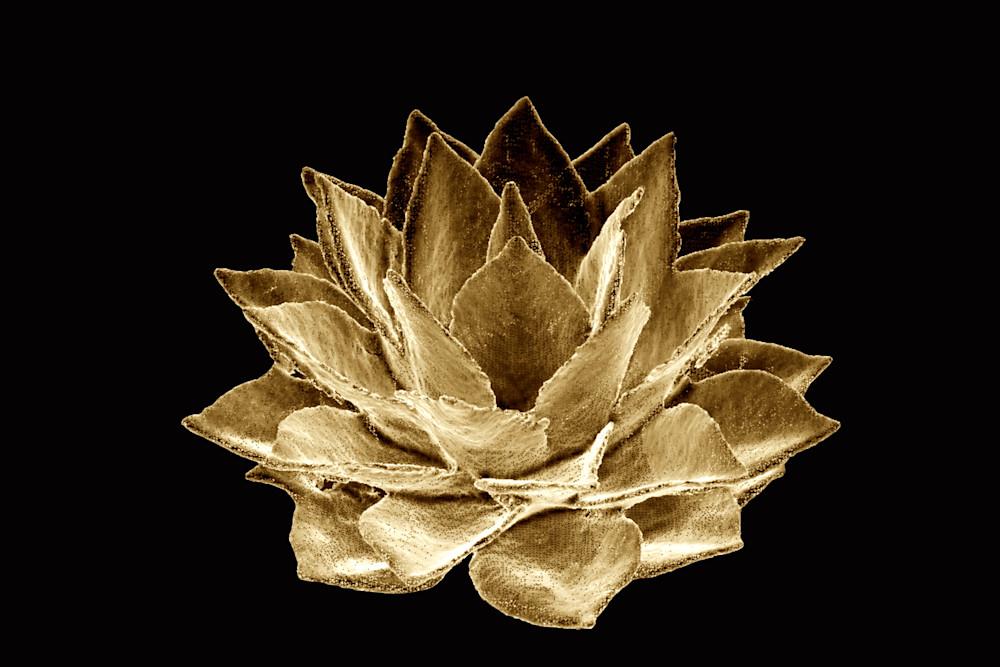 Agave Gold Art | Night Sculpture