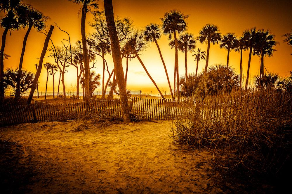 Golden Warmth Photography Art | Willard R Smith Photography