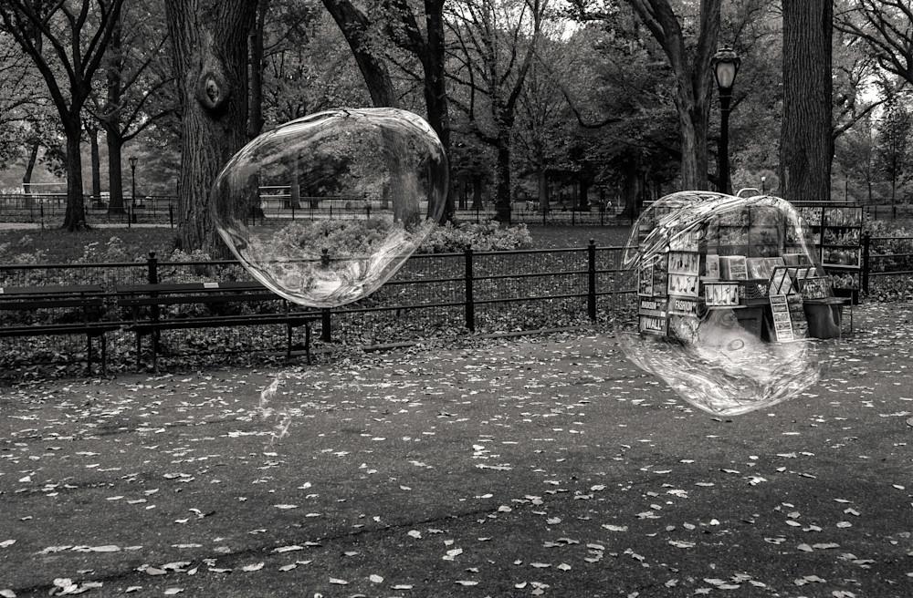 Central Park Bubbles  Photography Art | Alina Marin-Bliach Photography/alinabstudios LLC
