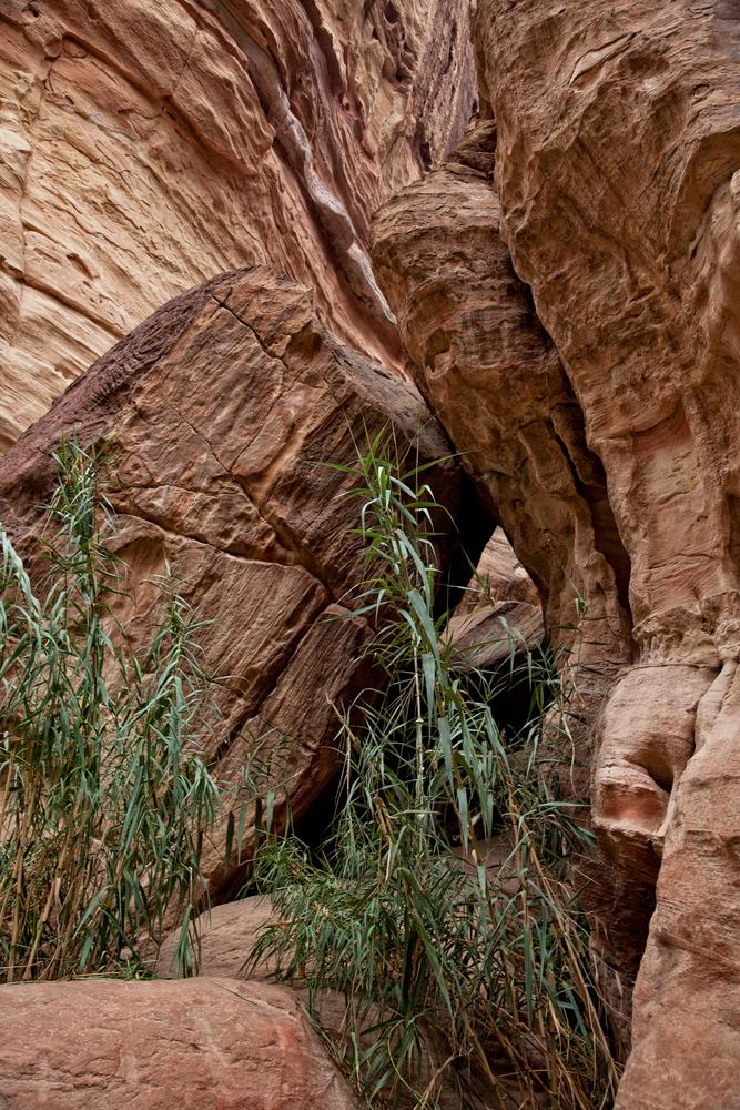 The Opening In The Rock Photography Art | Alina Marin-Bliach Photography/alinabstudios LLC