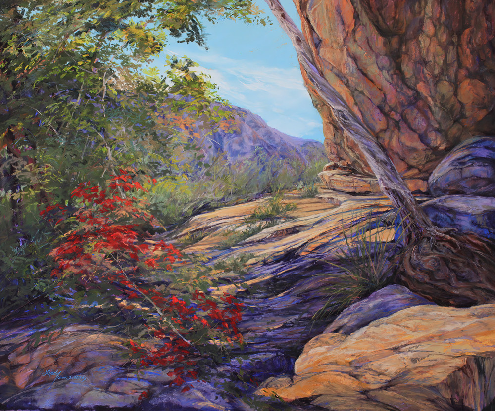 Lindy Cook Severns Art | Sanctuary From the Sun, print