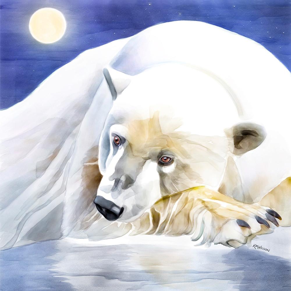 Aurora The Dreamy Polar Bear
