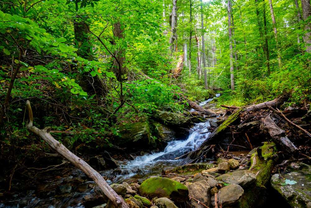 Shope Creek Cascades Sept 2021