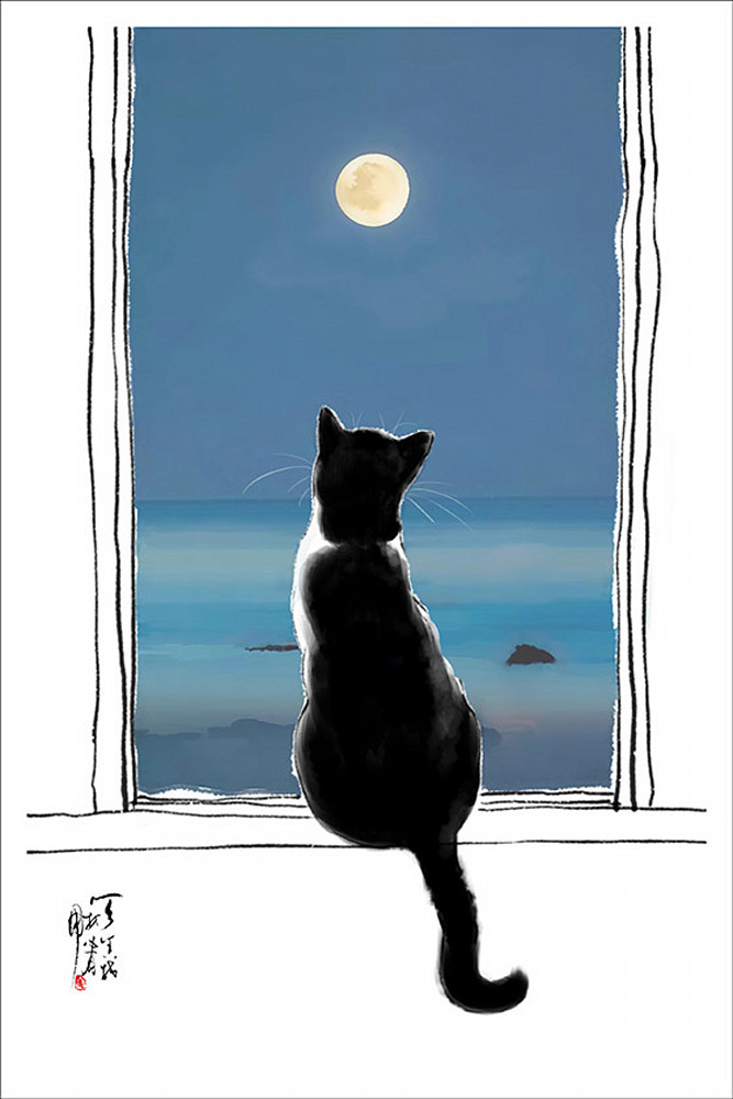 Cat And Moon Photography Art | Cheng Yan Studio
